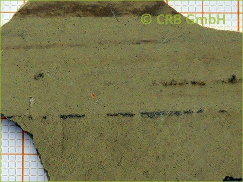 asbest analyse floor flex platte crb gmbh. Black Bedroom Furniture Sets. Home Design Ideas